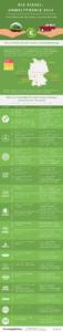 infografik diesel umweltpraemie